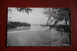 SAINT RAMBERT D'ALBON - Le Rhône Et Le Pont De Peyraud - France