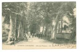 70 - LUXEUIL LES BAINS - Allée Des Platanes - Luxeuil Les Bains
