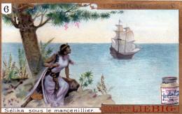 Chromos Veritable Extrait De Viande Liebig  ( 6-selika Sous Le Mancenillier ) - Liebig