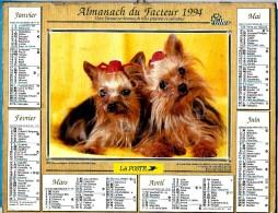 ALMANACH DU FACTEUR 1994 (57) - Complet **  COLLEY - DEUX YORKSHIRES ** - Calendrier OLLER N°305 - Calendarios