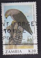 Zambie.  Oiseaux. Faucon De Dickinson 535 - Zambie (1965-...)