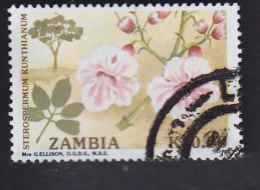 Zambie. Arbres Et Leurs Fleurs 547 - Zambie (1965-...)