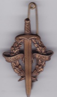 Insigne Préparation Militaire élémentaire - Insignes & Rubans
