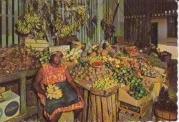 THE SUNNY CARIBBEAN MARCHANDE DE FRUITS - Bermudes