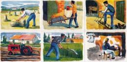 3 PLANCHES DE 6 IMAGES CARTONNÉES 6X8cm METIERS LES TRAVAUX AGRICOLES EDITIONS LES PLAISIRS ET LES JEUX VERS 1980/90 - Livres, BD, Revues