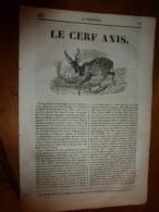 1835 LM  Le Cerf Axis; Rue Barbette à Paris;Le Rhin;Le Chateau-Gaillard (et Gravure); VERSAILLES Grav Bassin De Neptune - Vieux Papiers