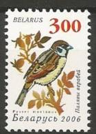Bealrus - Family SPARROWS And SNOWFINCHES - Eurasian Tree Sparrow ( Passer Montanus ) - Zangvogels