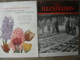 France ILLUSTRATION 211 NEHRU/ MAROC/ YUNNAN/NOUVELLES HEBRIDES/ CAMARGUE / PERE LACHAISE  29 Octobre 1949 - Journaux - Quotidiens