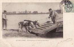 Le Vieux-Port - Embarquement De Veaux En Basse-Seine - France