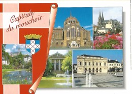49 CHOLET CAPITALE DU MOUCHOIR Armoiries, Jardin Du Mail, Eglises St-Pierre, Sacré-Coeur, Notre-Dame, Palais De Justice, - Cholet