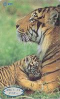 Télécarte Japon / NTT 231-153  - Animal Felin - TIGRE & Tigron - TIGER & Baby Japan Phonecard Telefonkarte - BE 348 - Selva