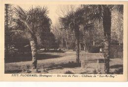 PLOERMEL  Ker Ar Beg  Le Chateau Un Coin Du Parc   Du Chateau Neuve TB (angle) - Ploërmel
