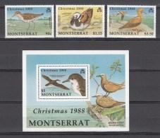 Montserrat 1988.3V +block,Christmas,birds,vogels,vögel,oiseaux,pajaros,uccelli,aves,MNH/Postfris(L2288) - Zonder Classificatie
