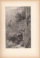 1891 - Gravure Sur Bois - Chasse - Chevreuil Et Chevrette - FRANCO DE PORT - Prenten & Gravure