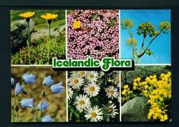 ICELAND  -  Local Flora  Multi View  Unused Postcard - Iceland