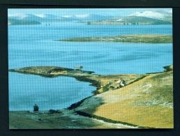 FALKLAND ISLANDS  -  New Island Settlement  Unused Postcard - Islas Malvinas