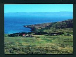 FALKLAND ISLANDS  -  Carcass Island Settlement  Unused Postcard - Islas Malvinas