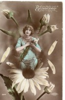 N° 58 : FANTAISIE FEMME ; Beaucoup , Paquerettes - Femmes