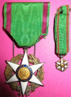 1883 Médaille Superbe Mérite Agricole Et Sa Réduction Et Rubans( En Argent Poinçonnée) Postage Voir Description - France