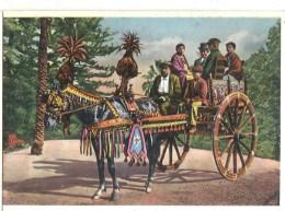 CARRETTO SICILIANO -VIAGGIATA .1957-FG.I123.M - Folklore