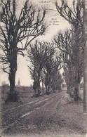 CHIMAY : Allée Du Jardin Du Prince - Edit. L. Ernult-Hutten, Chimay - Chimay