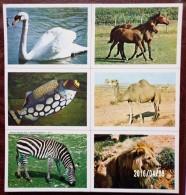 2 PLANCHES DE 6 IMAGES CARTONNÉES 8,5X12cm LES ANIMAUX EDITIONS LES PLAISIRS ET LES JEUX VERS 1980/90 - Livres, BD, Revues
