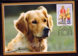 DOGS DOG - GOLDEN RETRIEVER -  SWEDEN SUEDE SCHWEDEN 2001 MI 2217 MAXIMUM MAXI CARD CARTE - Dogs