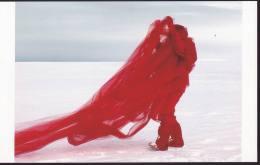 Art - Red 12 Antarctic Project By Andrea Juan (Argentina), 2005, 4th Beijing International Art Biennal, China, 2010 - Peintures & Tableaux