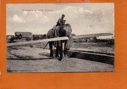 CEYLON - Elephants At Work - Sri Lanka (Ceylon)