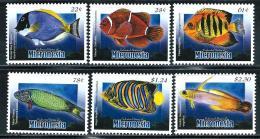 "Micronesia    ""Fishes""    Set    SC# 817-22   MNH** - Micronesia"