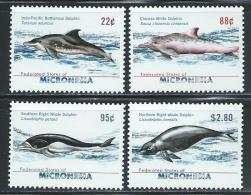 "Micronesia    ""Dolphins""    Set    SC# 824-27   MNH** - Micronesia"