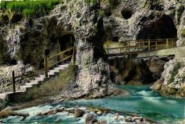 FONDO  TRENTO  Fg   Il Burrone  Val Di Non - Trento