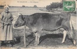 41 - EN SOLOGNE - Une Solognole Et Sa Belle Vache - N° 144 - Circulé En 1913 - - Centre-Val De Loire