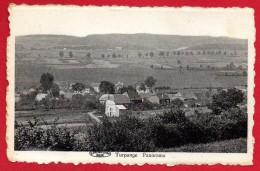 Turpange (Messancy). Panorama Du Village - Messancy