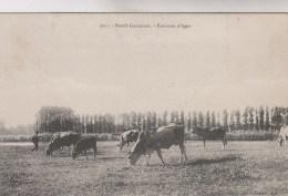 BOEUFS   GARONNAIS     ENVIONS D AGEN - Francia