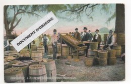 CHARLESTON SOUTH CAROLINA - ETATS UNIS - THE BRANNEN TRUCK FARM - POTATO SHIPPING - Charleston