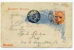 Bilhete Postal / RIO DE JANEIRO  BRAZIL / 15 June 1894 /  Capital Federal - Briefe U. Dokumente