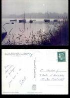 20459    Ile Aux Moines    N°-71186 - Ile Aux Moines