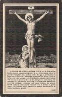 DP. PIETER DUMEZ ° AERTRYCKE 1848 - + HEYST-AAN-ZEE 1912 - Religion & Esotericism