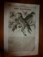 1835 LM : Les Faucons; Un Diner à Alger; Philippe Pot ; Philippe 1er; Guillaume Le Conquérant. - Vieux Papiers