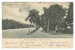 Argentine // Argentina //Buenos Aires, Avenida De Las Palmeras, Parque 3 De Febrero - Argentine