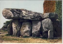 La BRETAGNE - Région De CARNAC,  Dolmen De Crucuno - Dolmen & Menhirs