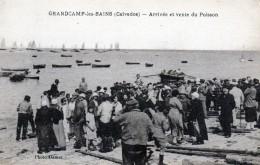 14 Grandcamp Les Bains Arrivée Et Vente Du Poisson - France