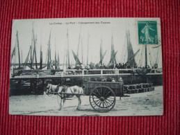 Le Crotoy - Le Port , Chargement Des Coques - Le Crotoy