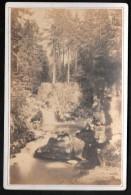 Saut Des Cuves - AD BRAUN, A DORNACH ( Haut Rhin )  9,8 Cm X 15,5 Cm - Pma1306 - Old (before 1900)