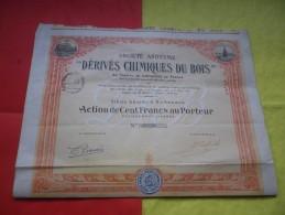 DERIVES CHIMIQUES DU BOIS (1923) Bordeaux , Gironde - Azioni & Titoli