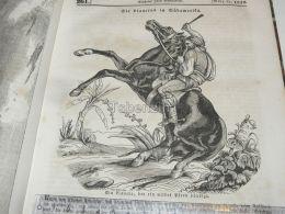 Claneros Clanero South America Wildes Pferd Wild Horse  Engraving Print 1838!!! - Prints & Engravings