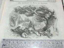 Moira, Portugal Korkwald Cork Forest Bosques De Corcho Militar Military Soldier Engraving Print 1838!!! - Estampas & Grabados