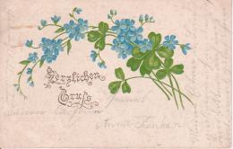 AK Herzlichen Gruss - Blumen - Prägekarte - 1903 (22600) - Blumen