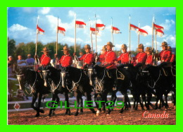 MÉTIERS - ROYAL CANADIAN MOUNTED POLICE - NORTH-WEST MOUNTED POLICE OR RED TINICS - - Police - Gendarmerie